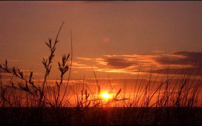 avondsfeer-de-lange-duinen-noord-Middel